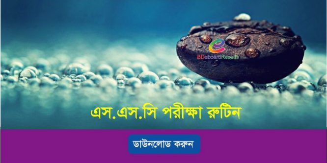 SSC Routine 2019 All Education Boards Bangladesh