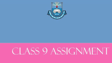 Class 9 Assignment Answer & Solution all Subjects